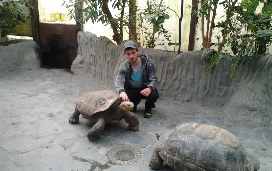 Želva obrovská + Želva sloní a já